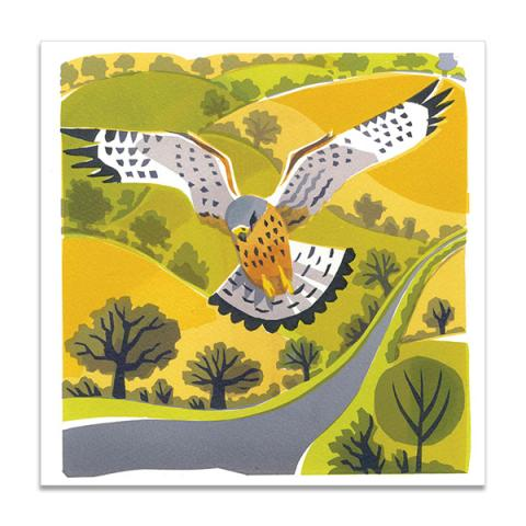 Windhover greeting card