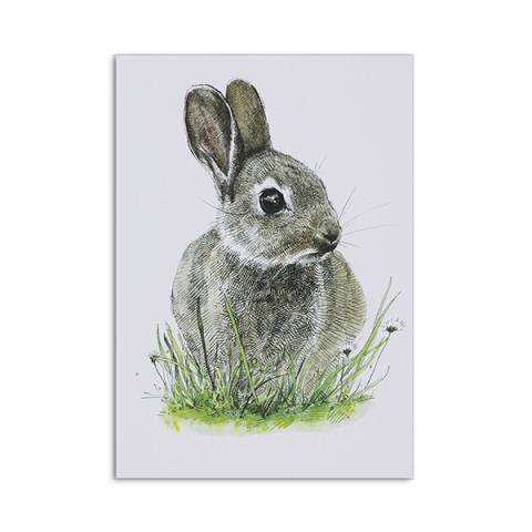 Bunny greeting card by Hannah Longmuir
