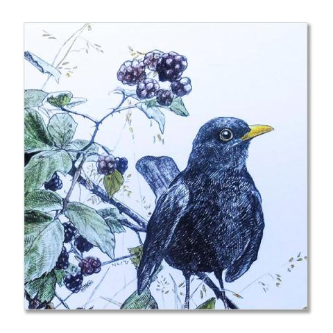 Blackbirds and brambles greeting card by Hannah Longmuir