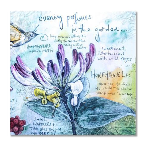 Evening perfumes greeting card by Hannah Longmuir