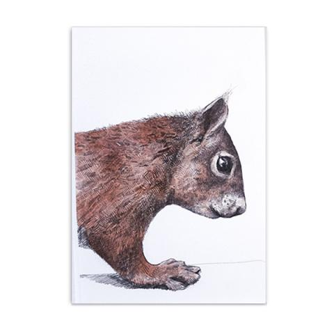 Mr Tufts red squirrel by Hannah Longmuir greeting card