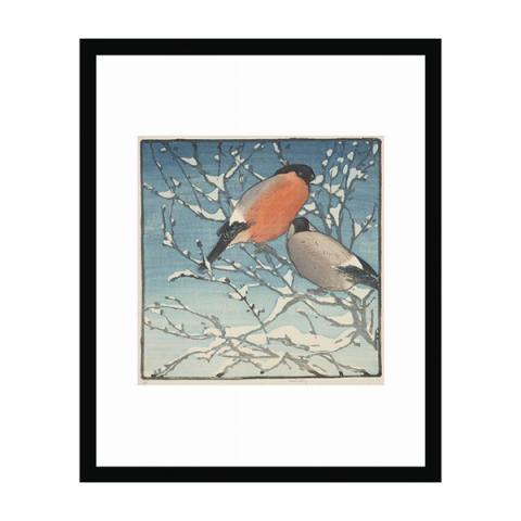 Bullfinches by Allen William Seaby (30 x 40 cm) framed print