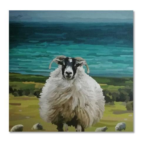 Coastline sheep greeting card