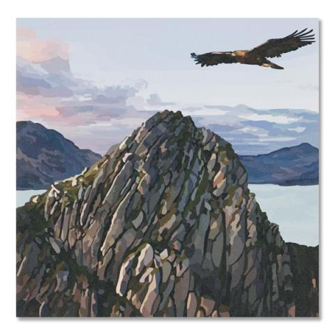 Eagle soaring over rocky landscape greeting card