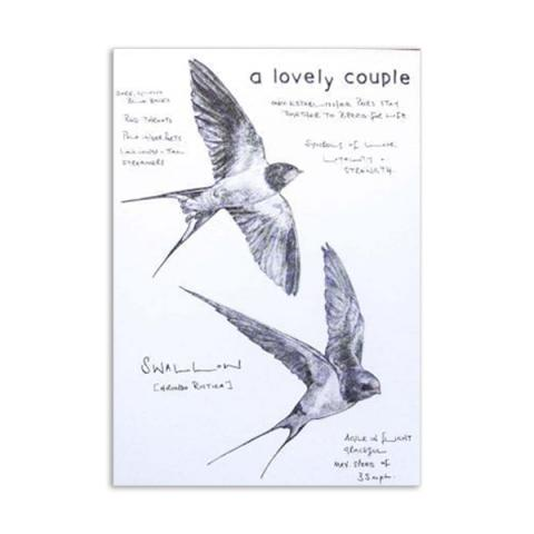A lovely couple swallows by Hannah Longmuir greeting card