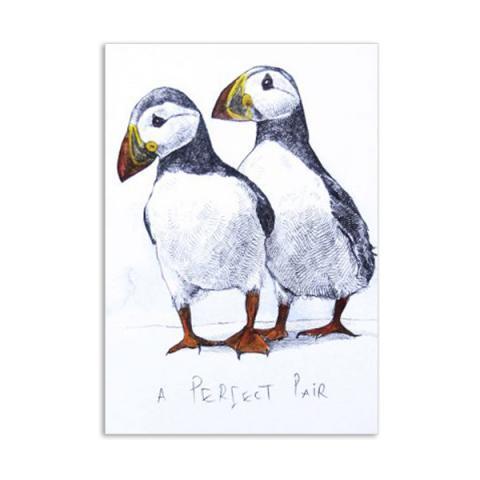 A perfect pair puffins by Hannah Longmuir greeting card