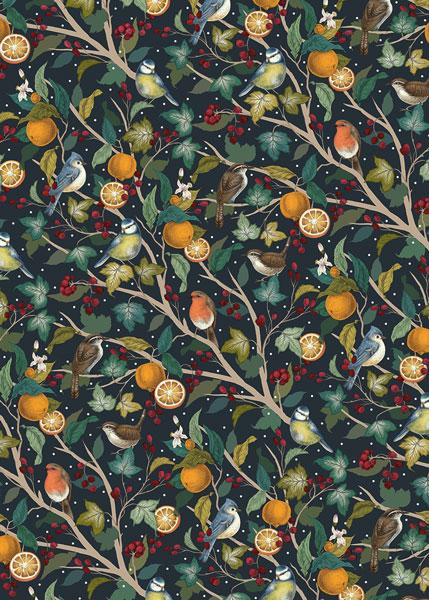 Birds and Oranges Gift Christmas Wrap