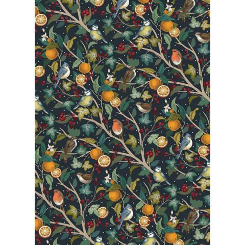 British garden birds and oranges gift wrap (single sheet)