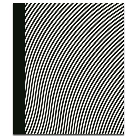 Bridget Riley Paintings 1963-2015 Hardback