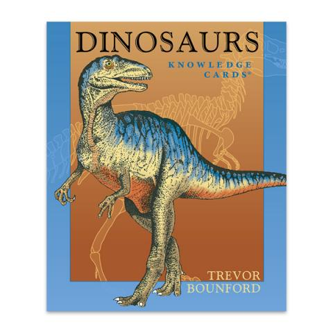 Dinosaurs knowledge quiz cards