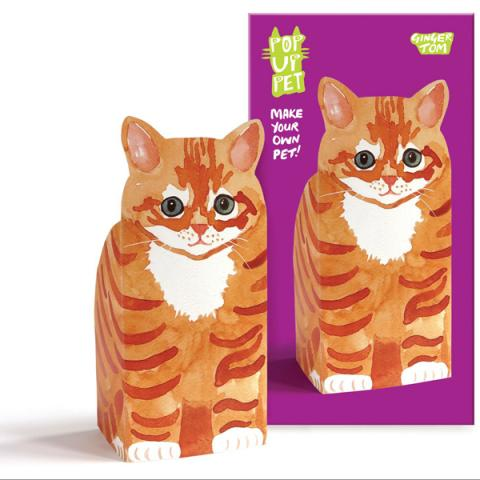 Ginger Tom pop up pet
