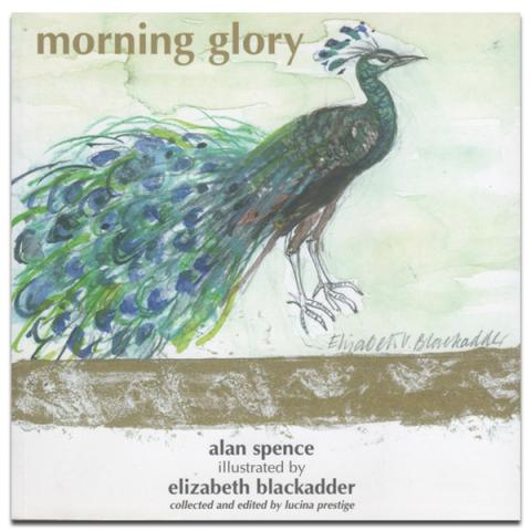 Morning Glory by Alan Spence Illustrated by Elizabeth Blackadder (paperback)