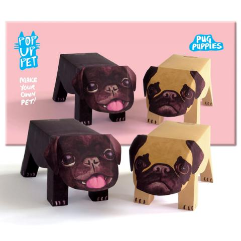 Pug puppies pop up pet