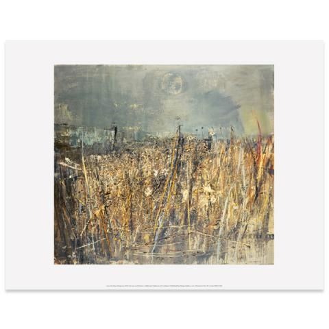 Seeded Grasses and Daisies, September Joan Eardley Art Print