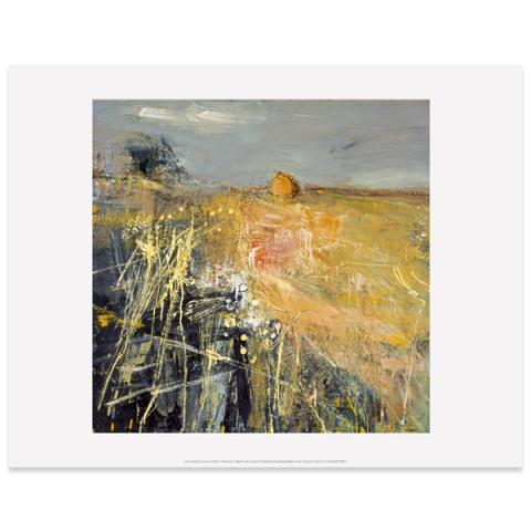 Summer Fields by Joan Eardley art print