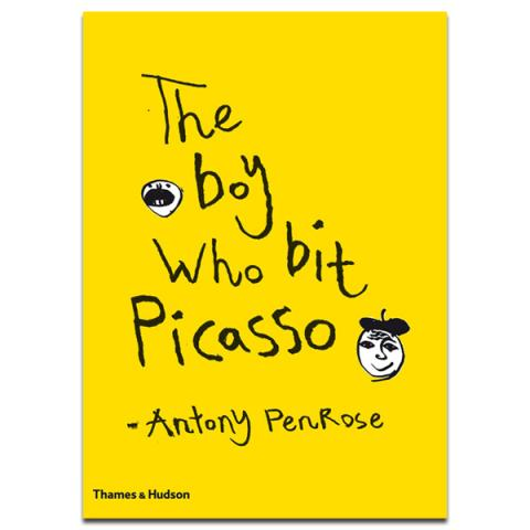 The Boy Who Bit Picasso Hardback