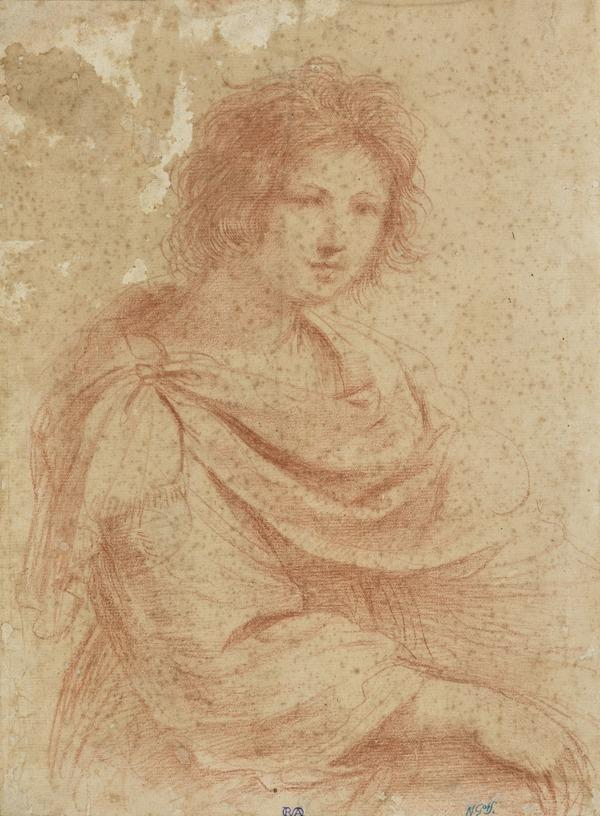 Half-Length Female Figure