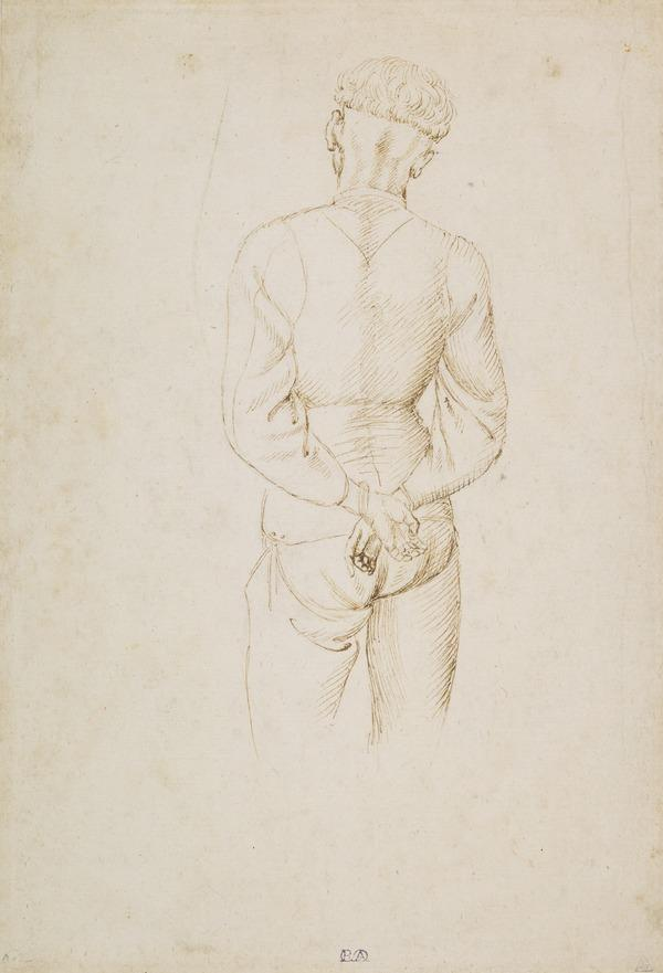 Study of a Young Man with his Hands tied behind his back (About 1434 - 1438)