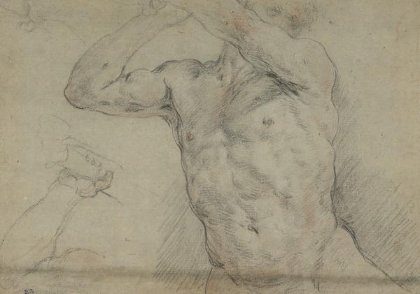 Study of a Male Torso, with a Separate Sketch of a Raised Hand Holding a Club (1620)