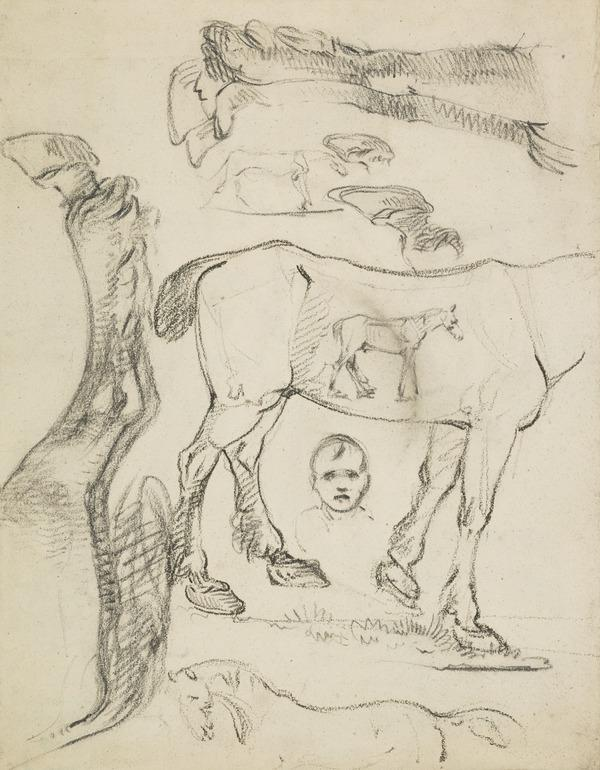 Sketches of Horses [Verso: Horses]