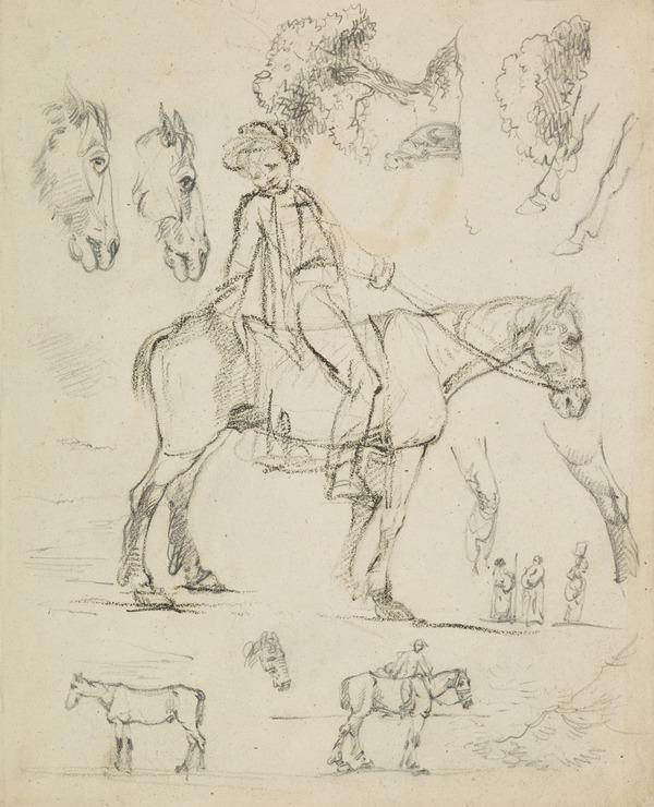Sketches of a Boy on a Horse, Horse's Heads and Trees [Verso: Sketches of Horses and Four Male Heads]