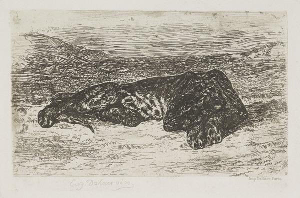 Tigre Couche dans le Desert (1846)