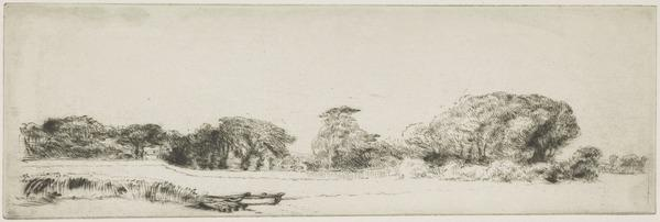 Halliford on Thames: Long Row of Trees