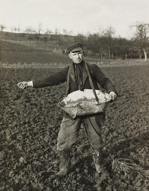 Farmer Sowing, 1952 (1952)