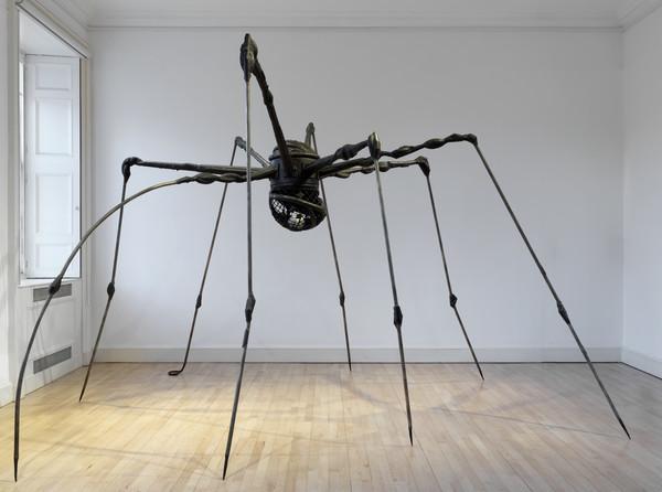 Spider (1994)