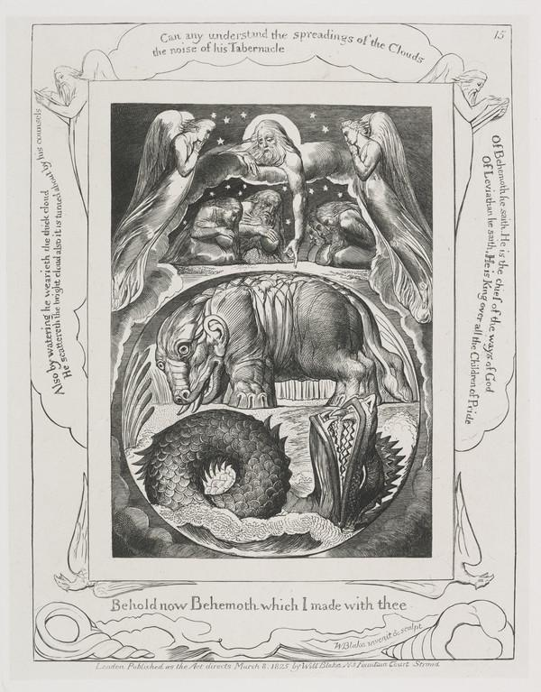 Illustration to 'The Book of Job': Behold Now Behemoth (15) (1825)