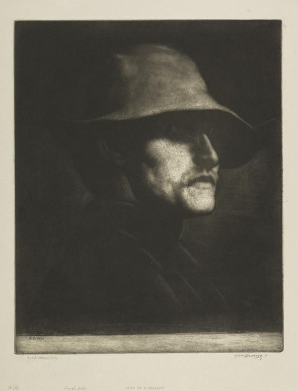 Head of a Peasant (Strang No. 15) (1882)