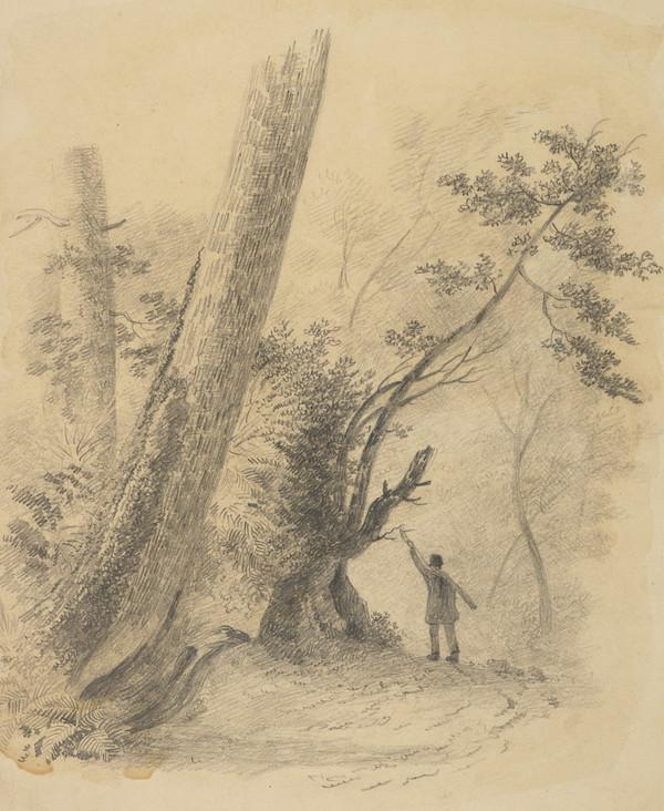 Forest Scenery with Male Figure