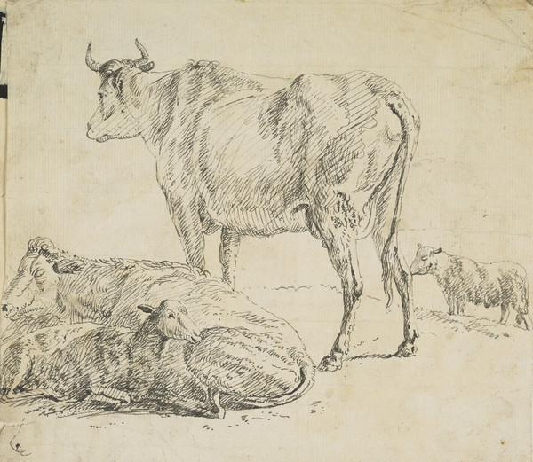 Cow and Three Sheep