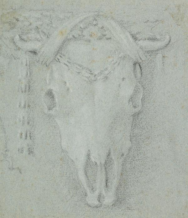 Skull of a Goat (Estimated earliest year: 1728)