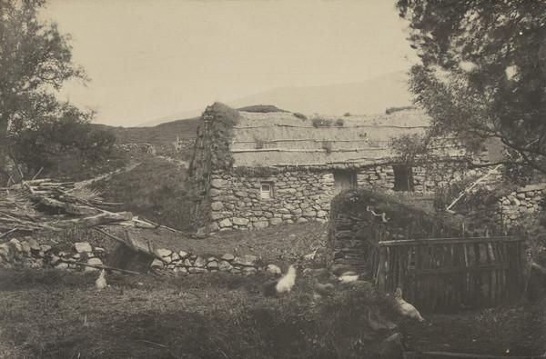 Landscape with cottage and chickens