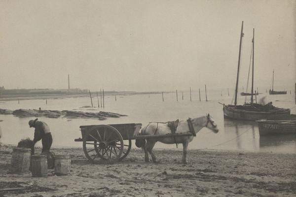 'West Haven'. Man with barrels, horse and cart on shore, bay with boat behind