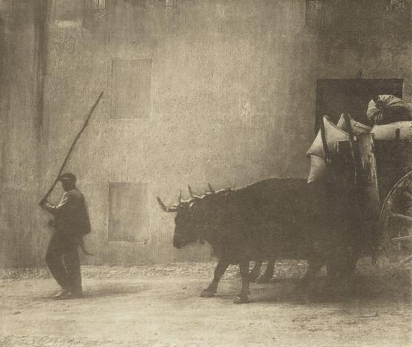 Bullock Cart, Burgos (1913)