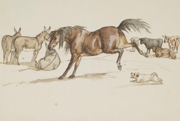 Donkeys, cows and horse in field. Little dog Fanny, barking at horse (Dated Oct. 1837)