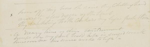 Scrap of Manuscript Prose