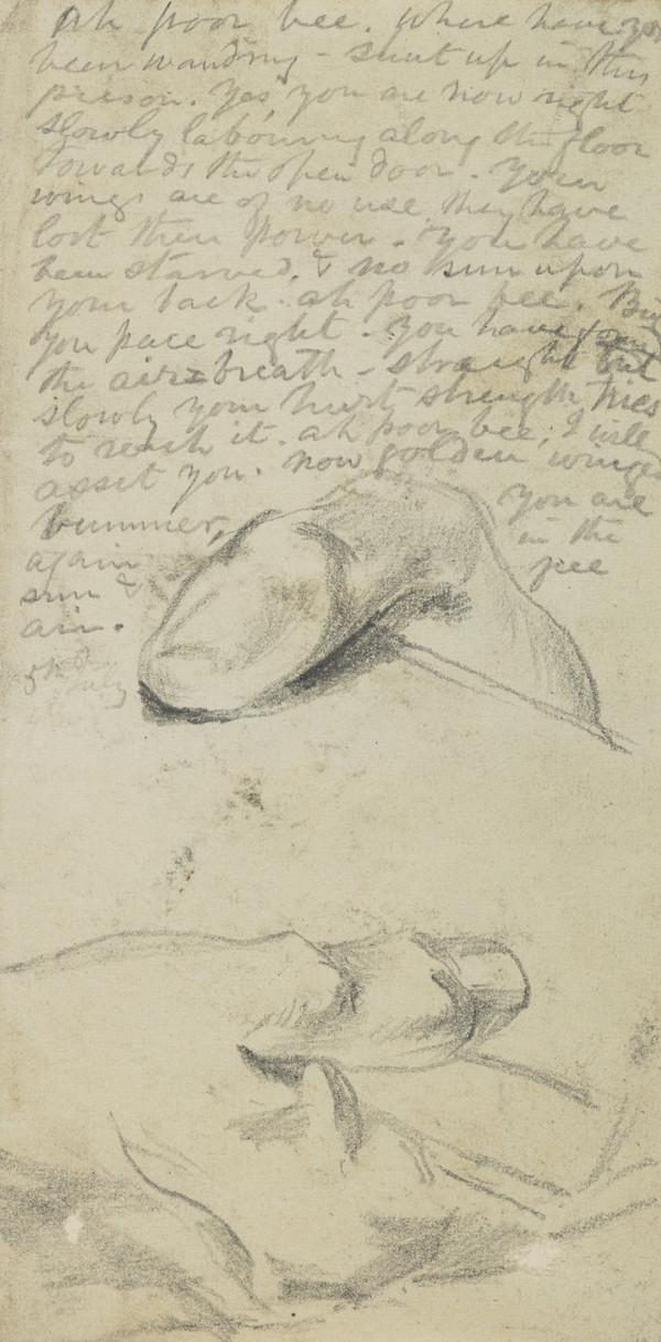 Study of Hands (and Manuscript Prose) (Dated 1848)