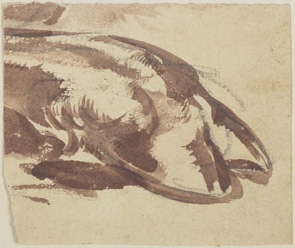 Study of a Cloven Hoof