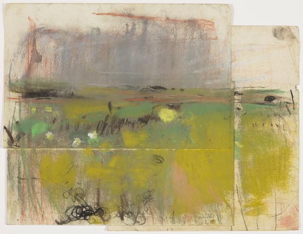 Landscape of Flat Fields
