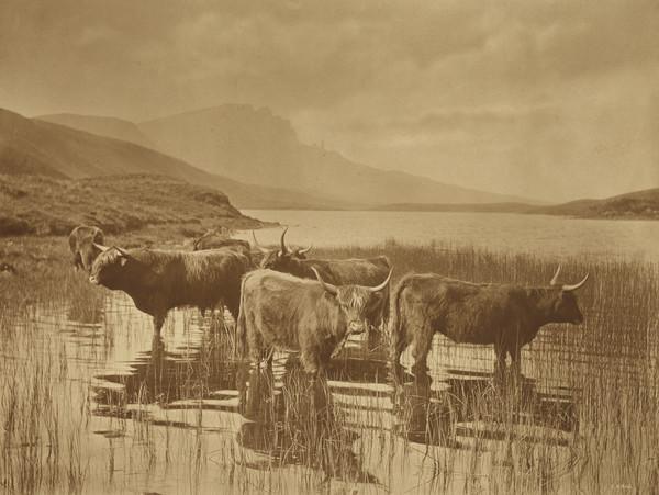 Loch Fada, Skye