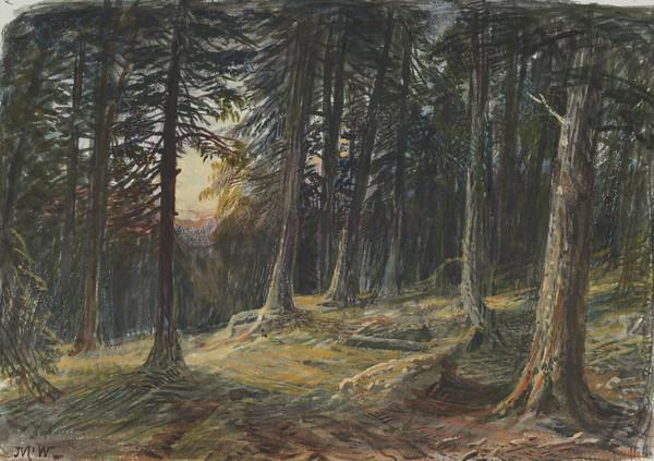 Sunset in a Pine Forest (19th century)