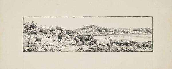 One of Three Designs for a Book Illustration - Highland Cattle by a Loch (Late 19th century)