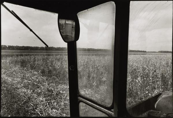 The Ukrainian Steppes, Kirovsky Collective Farm, near Dnepropetrovsk, Ukraine (October 1998)
