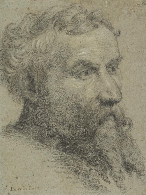 Portrait of a Bearded Man (1535 - 1540)