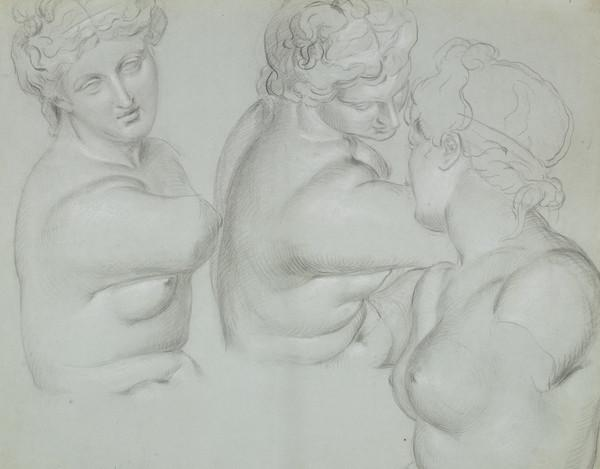 Three Studies on an Antique Cast of a Male Nude (About 1829)