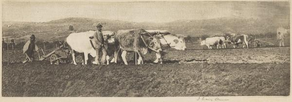 'Ploughing on the Campagnetta', Lombardy (1894)