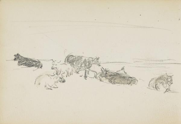 Sketch of cows (About 1883)